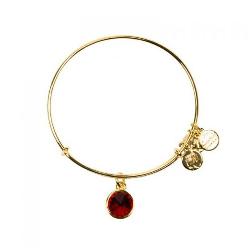 Pulsera Mes Enero ALEX AND ANI